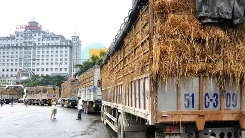 Top các mặt hàng xuất khẩu việt nam sang trung quốc 3-2020